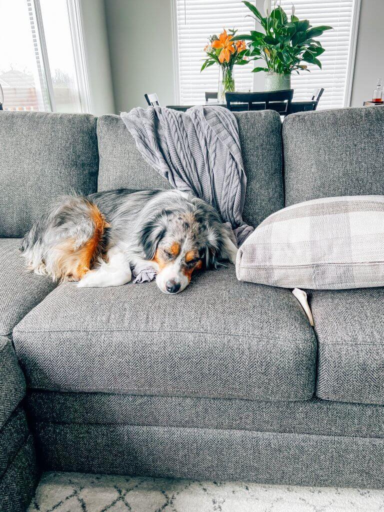living room decor, sectional sofa