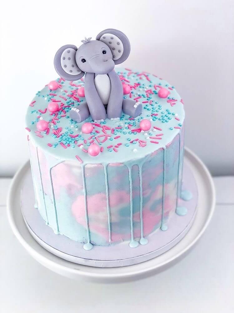 gender reveal cake; elephant, blue and pink sprinkles