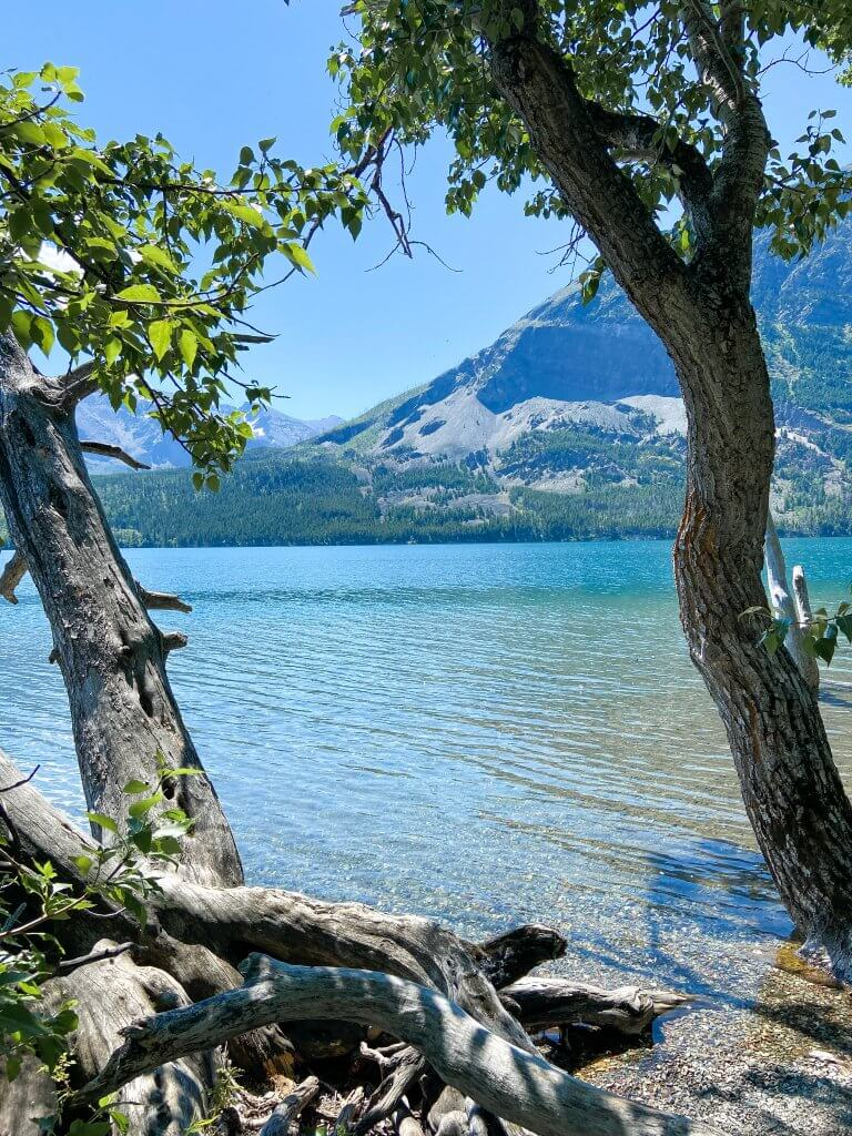 Glacier National Park and Montana Travel Guide